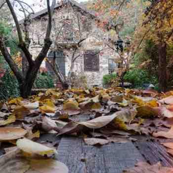 CORSO BASE DI FOTOGRAFIA PAESAGGISTICA - immagine #5